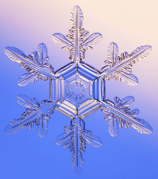 The Snowflake: Winter's Secret Beauty