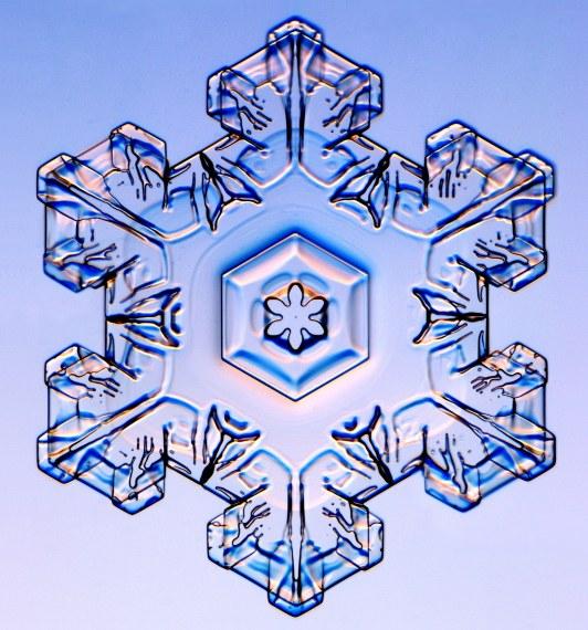 http://www.its.caltech.edu/~atomic/snowcrystals/class/w040123b025.jpg