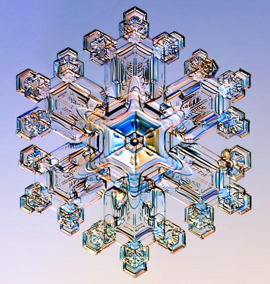 http://www.its.caltech.edu/~atomic/snowcrystals/class/w041219b055.jpg