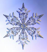Monster Snowflake - SnowCrystals.com