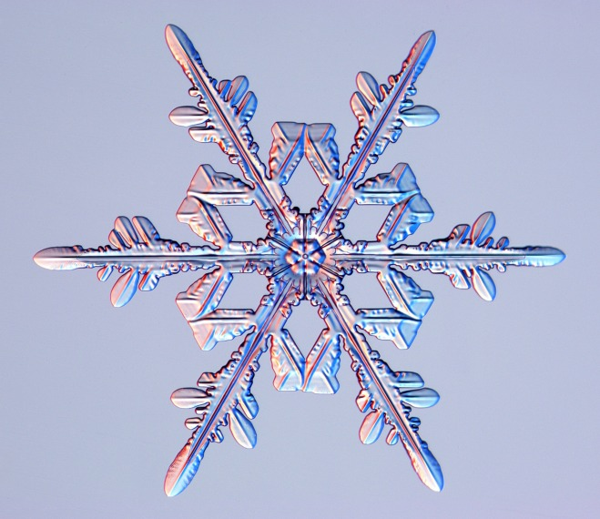 Snowflakes: Extraordinary Microscopic Photography of Real Snow Crystals by Kenneth G. Libbrecht