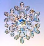 [Image: snowflake.jpg]