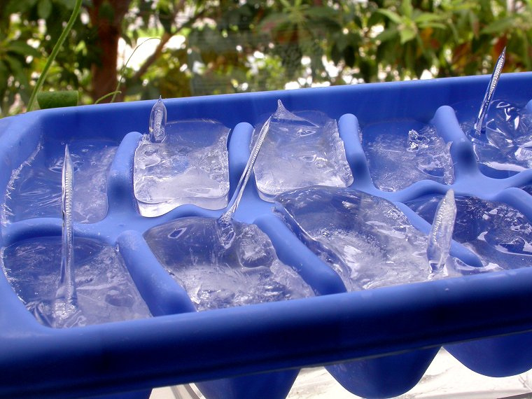 Icy Water Dish