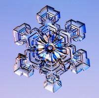 снежинки,снег, кристаллы, лед, вода, Кеннет Либбрехт, Kenneth Libbrecht.