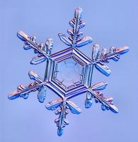 DataLife Engine Версия для печати Волшебные снежинки.
