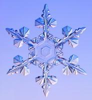 Под микроскопом снежинки SERKO.